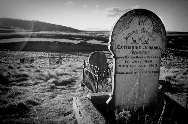 Headstones in the old kiandra graveyard