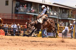 some of the action from the Jindabyne rodeo