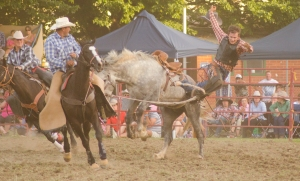 Tumbi rodeo-10