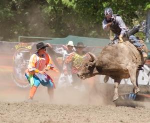 Tumbi rodeo-2