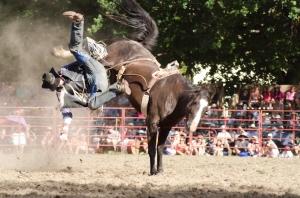 Tumbi rodeo-7