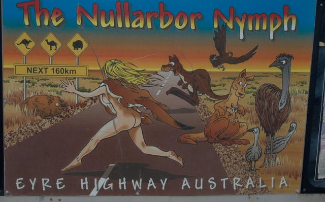The legendary Nullarbor Nymph