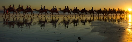 Riding, or photographing, the camels at sunset on Cable Beach is one of the tourist clichés, but what the heck ...everybody likes a sunset photo !