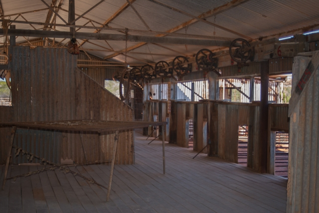 Inside of the shearing shed