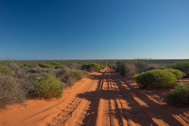 50kms each way of red sand !