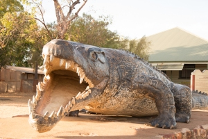 Life size replica of the largest crocodile ever shot.