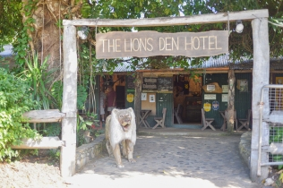 The Lions Den hotel