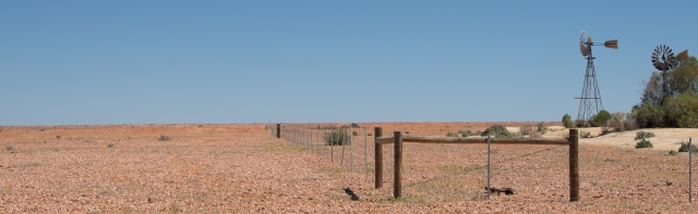 birdsvilletrack-3