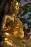 Buddha, Wat Pathum Khong