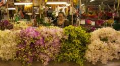 flower market-26
