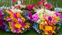 flower market-37