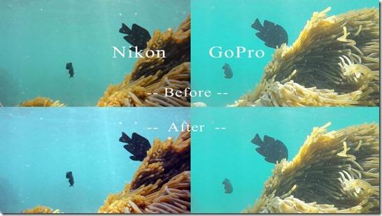 Nikon_v_gopro4blog_3