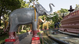 Elephant sized water feature !