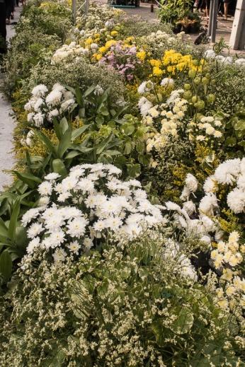 floral_display-1