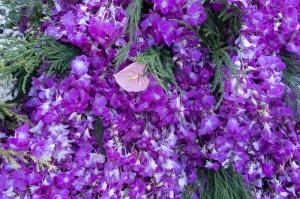 floral_display-11