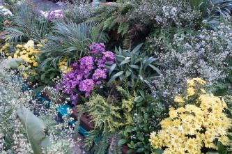 floral_display-13
