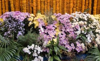 floral_display-17