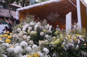 floral_display-18