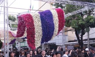 floral_display-19