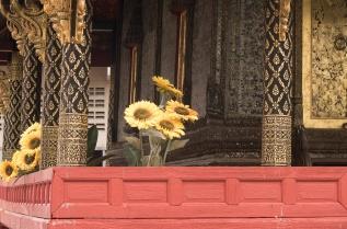 Wat Paknam photowalk